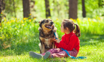 How Children Can Benefit from Pet Ownership